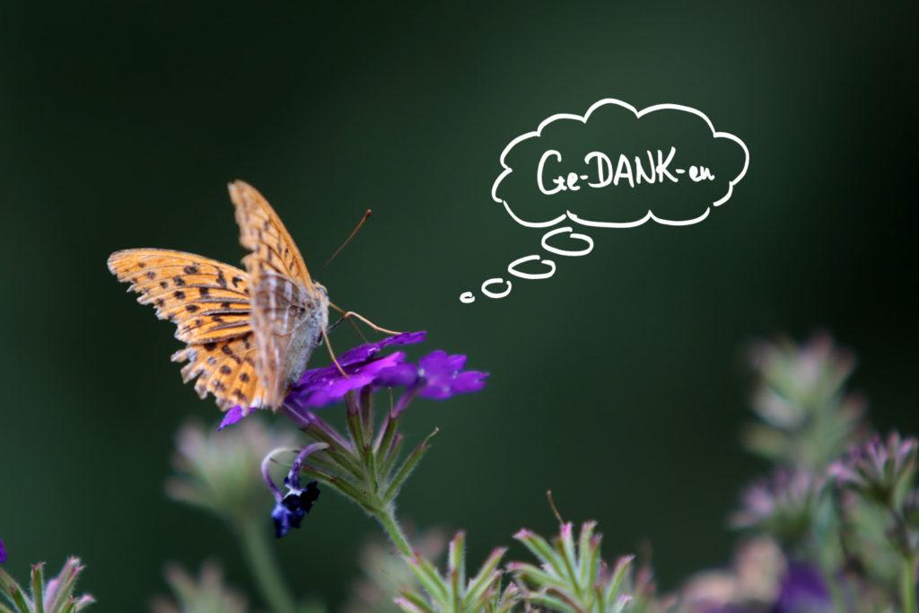 Der GE-DANK-en-Schmetterling